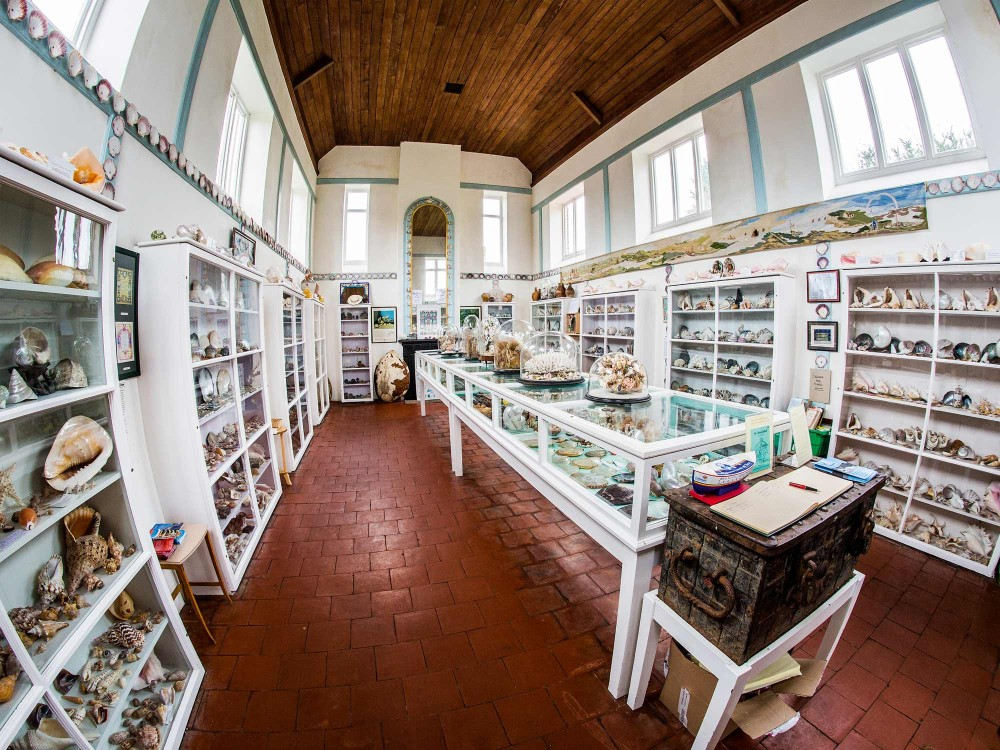 Inside the Shell Museum at Glandford