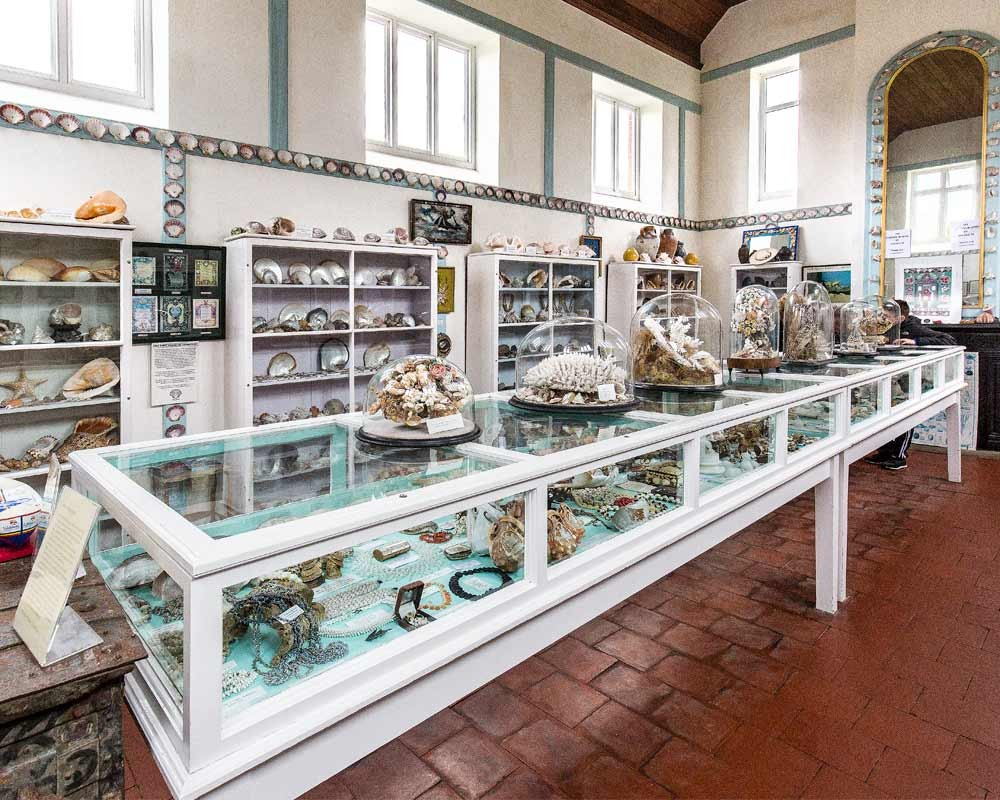 Glass cabinets at the Shell Museum at Glandford