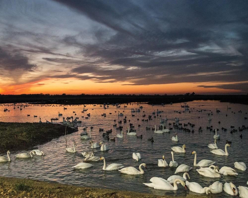 Main Lagoon at dusk